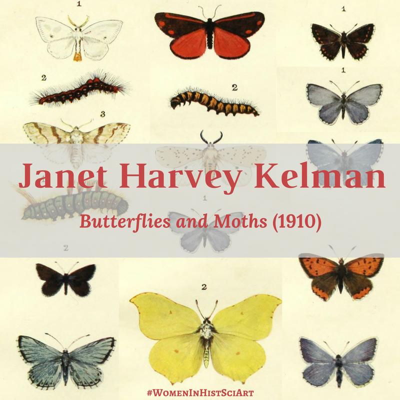 Janet Harvey Kelman